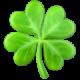 four-leaf-clover_1f340